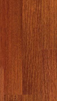 Kempas Holz